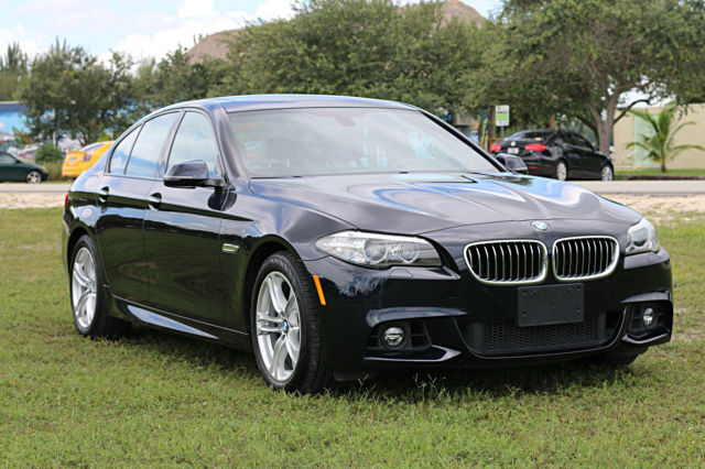2014 BMW 5-Series (Blue/Black)