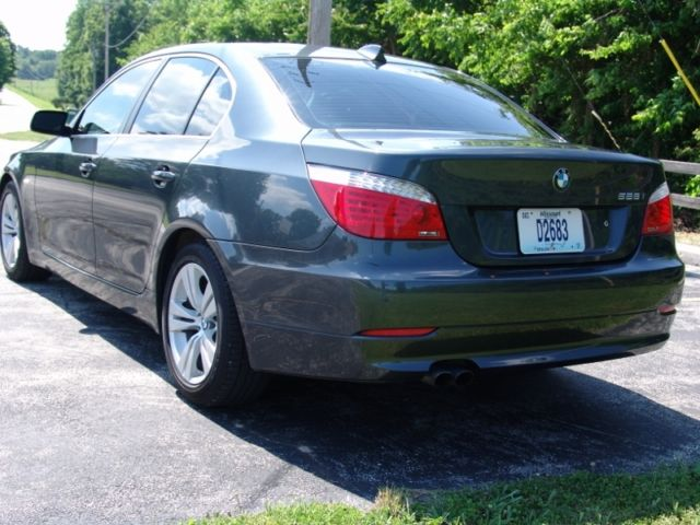2010 BMW 5-Series (Gray/Gray)