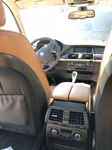 2010 BMW X5 (Black/Brown)