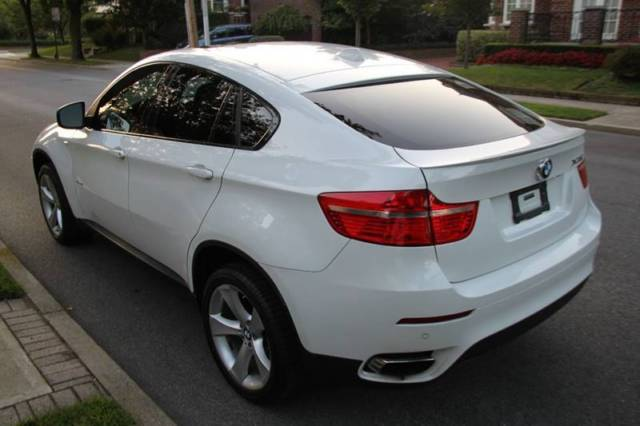 2009 BMW X6 (White/Brown)