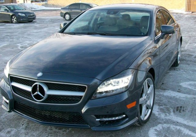 2014 Mercedes-Benz CLS-Class (Steel Grey Metallic/Ash / Black)