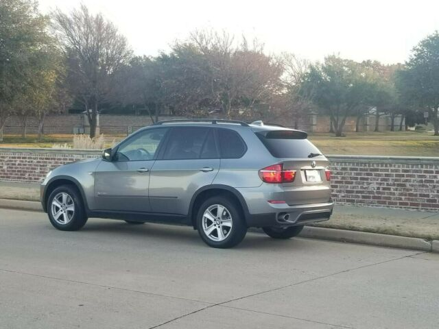 2012 BMW X5 (Grey/White)